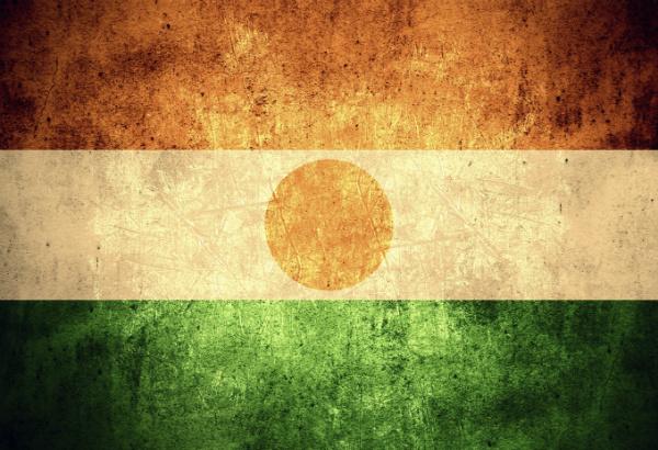 Niger Travel Alerts and Warnings