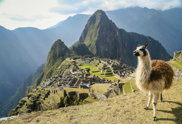 The Guide to Travel Immunizations for South America